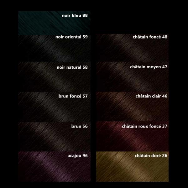 palette couleur bigen